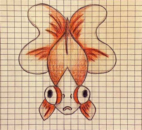 Can Yall Ask Me Questions Link In The Bio Make A Butterfly Telescope Eye Goldfish Drawing My