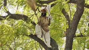 Farmer's suicide triggers protests in India | News | Al ...
