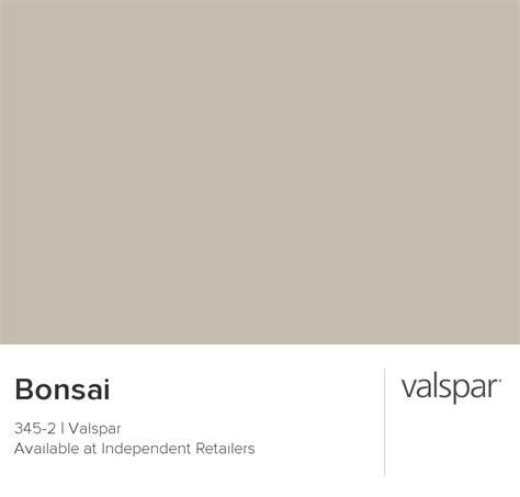 bonsai from valspar house renovations