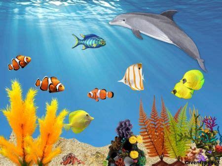 fish   sea clipart creation clipground