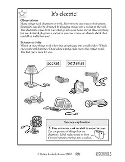 1st grade 2nd grade kindergarten science worksheets it