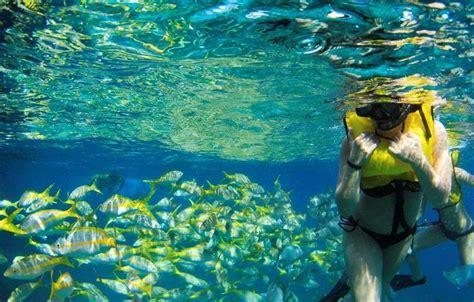 Daily Boat Rental Marathon Fl by Charter Boat For Snorkel And Fishing Marathon Fl Florida