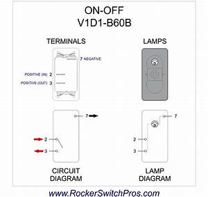 Carling Switch Wiring Diagram  U2013 Volovets Info