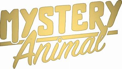 Animal Mystery Guess Google Hey Talk Questions