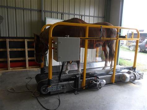 tapis roulant pour chevaux 28 images tapis roulant pour chevaux tapis roulant immerg 201