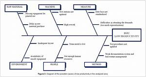 The Reorganization By Processes And Its Effect On The