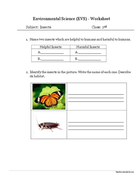evs worksheets for class 2 food 941762 worksheets library
