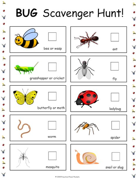 {free} Bug Scavenger Hunt!  Insects, Free Preschool And Preschool Themes