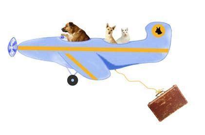 flugreise mit hund nach daenemark hundeinfoportal