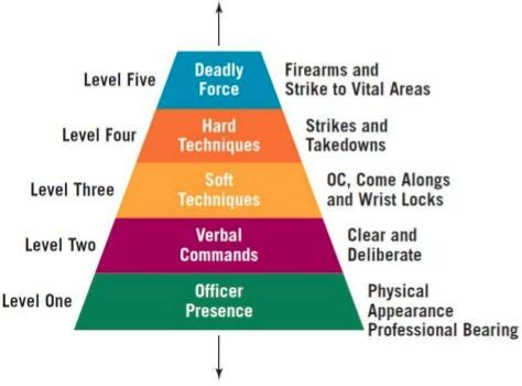 image result  lapd   force chart police