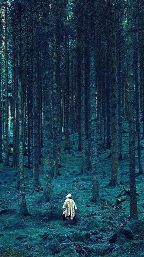 na  wood forest blue mountain nature wallpaper