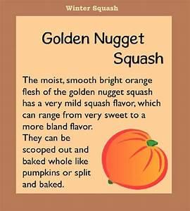 Golden Nugget Squash      Justeatveggies Com  Guide