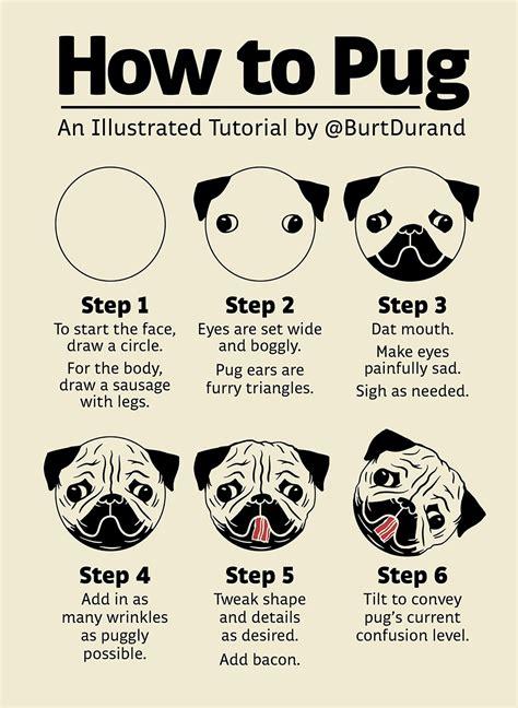 burt  tutorials pugs pug cupcakes pug cake