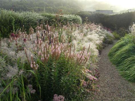 New Garden Nursery Photograph  Dove Cottage Nursery & Garden