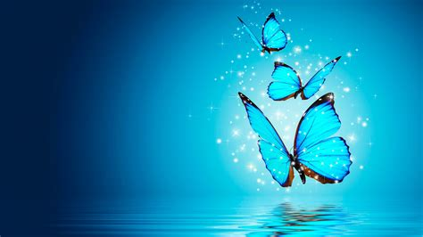Blue Magical Wallpaper Hd by Butterfly Blue Water Magical 4k Wallpaper Best Wallpapers