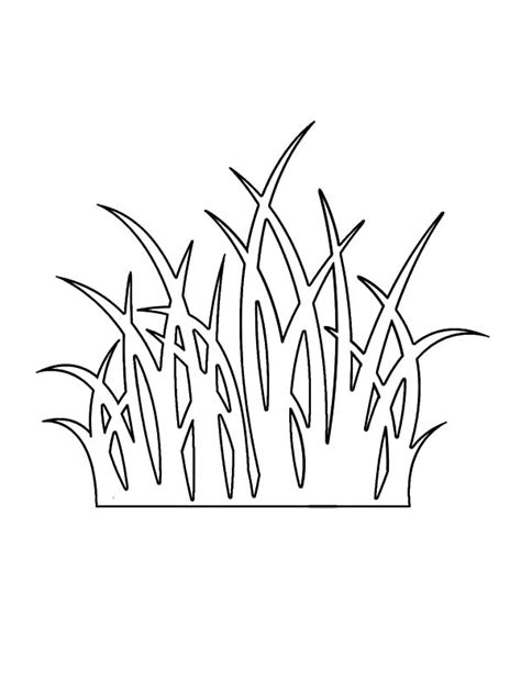 Coloring Grass by Grass Outline Coloring Pages Color