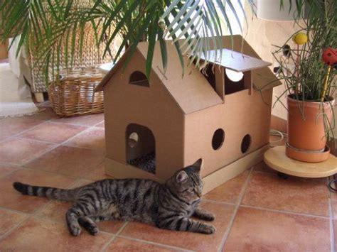 jeux pour chat maison le catalogue d id 233 es
