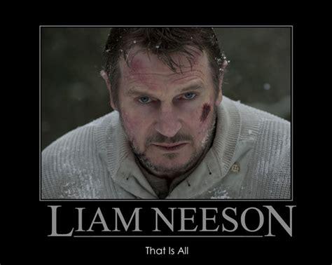 Liam Neeson Memes - the 20 best liam neeson memes movies galleries paste