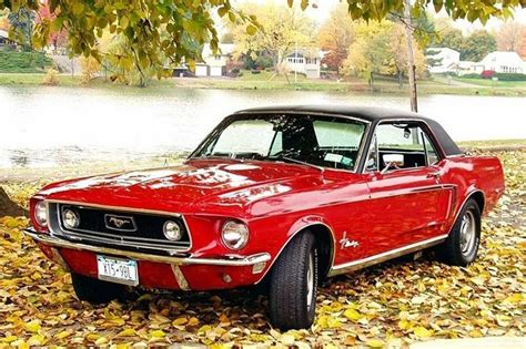 mustang v8 coolest 25 best ideas about mustang v8 on ford