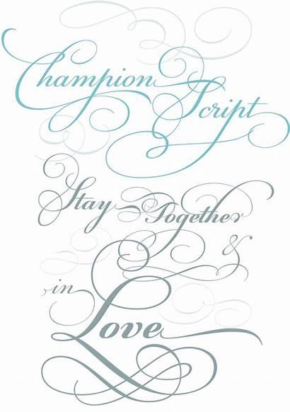 Script Calligraphy Font Alphabet Fonts Champion Samples