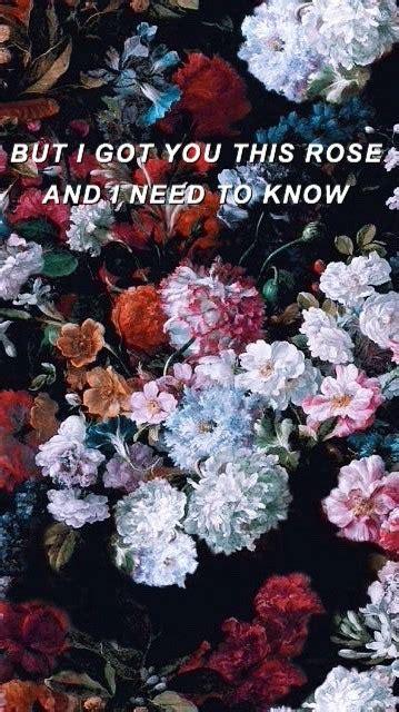 roses shawn mendes lyrics tumblr
