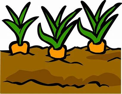 Garden Soil Clipart Penguin Gardening Plants Dirt
