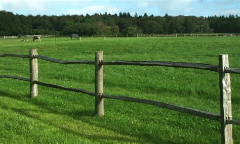 Post And Rail Fencing  No Obligation Quotes Safesite