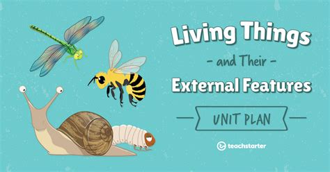Living Things Are All Around Us Lesson Plan