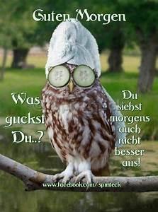 Freche Gute Nacht Bilder : sch nen montag spr che lustig montag bilder ~ Yasmunasinghe.com Haus und Dekorationen