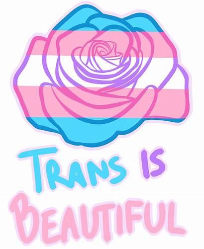 Transgender Pride Lgbt Mtf Ftm Trans Positivity