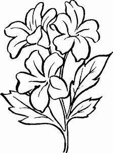 Free Clip Art Flowers Black And White