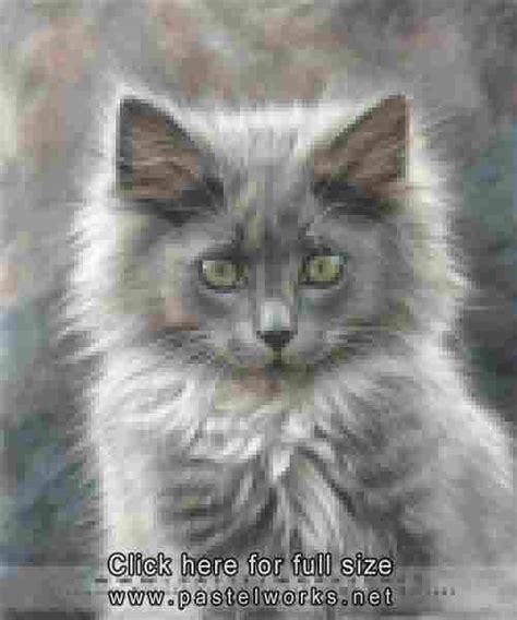 portrait  kitten pet portraits animal art