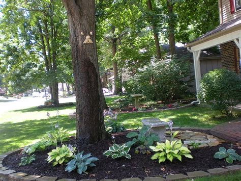 Gardens, Landscaping And Yards