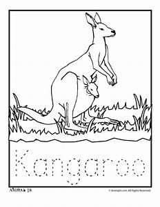 Dingo Diagram - Coloring Pages