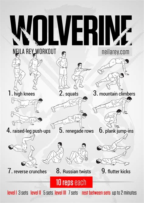 cuisine musculation wolverine workout health and fitness