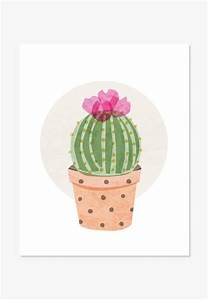 Art Print: Ball Cactus   Cacti, Creative and Printing