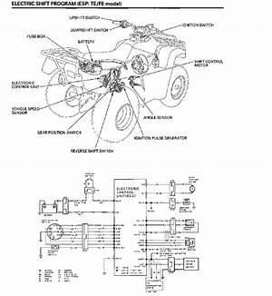 2000 Honda Rancher 350 Es Wiring Diagram Synergydiagram Enotecaombrerosse It