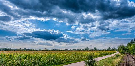 kostenloses foto maisfeld landschaft wolken