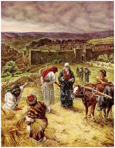 king david purchasing the threshing floor