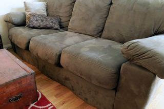 clean urine   couch cushions clean couch
