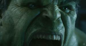 The Hulk from The Avengers - The Incredible Hulk Image ...