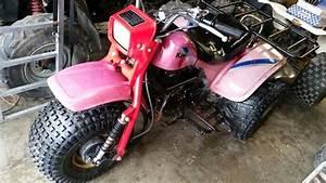 1984 Kawasaki Klt 200c