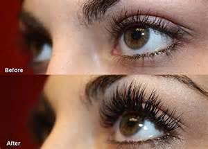 permanent hair extensions myo organic castor eyelash enhancer 100 and