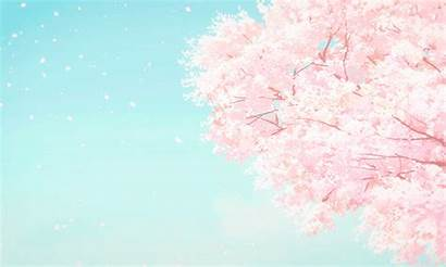 Sakura Pink Petal Japan Heart Hearts Kichi