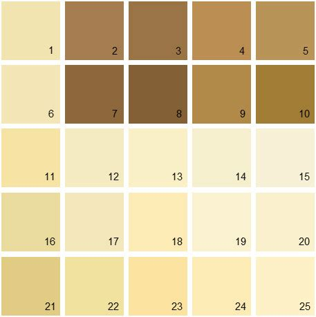 benjamin moore paint colors yellow palette 05 house