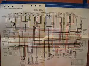 Nos Yamaha Factory Wiring Diagram 1996 Yx600 S Yx600 Sc