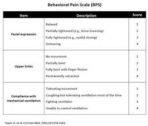 Cpot Pain Scale Pdf - Image Mag