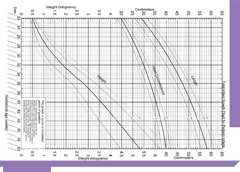 Download Newborn Care Chart Template For Free Page 102