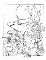 Aquarium Coloring Pages Pa Printable Getcolorings sketch template