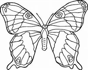 Butterflies Coloring Pages printable coloring pages ...